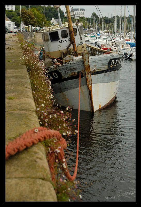 Bretagne... quand tu nous tiens. 005876_forum