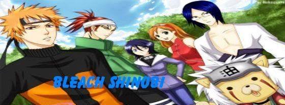 Bleach Shinobi
