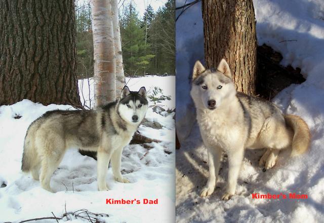 Kimber's Scrapbook (and Falon's too) UPDATE 3/9/13 ScreenShot2013-01-18at25743PM_zpsdbb84c06