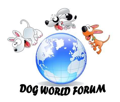 Dog World Forum