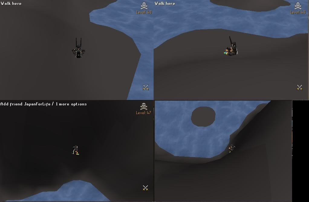 EPIC MOMENT GLITCH IN WILDY !!! WTFLESSERS-4