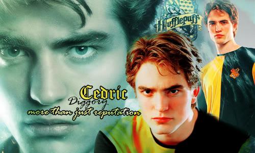 Cedric Arts ~ CedFirma
