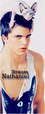 Nathaniel A. Strauss