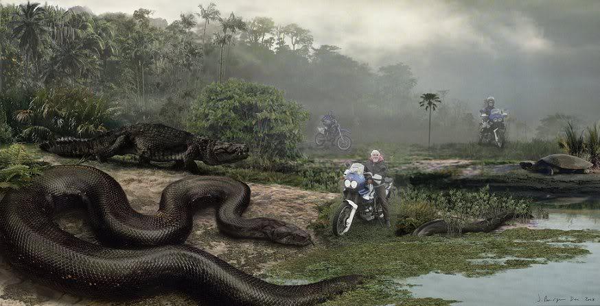 Giant Snake!!! Dhg