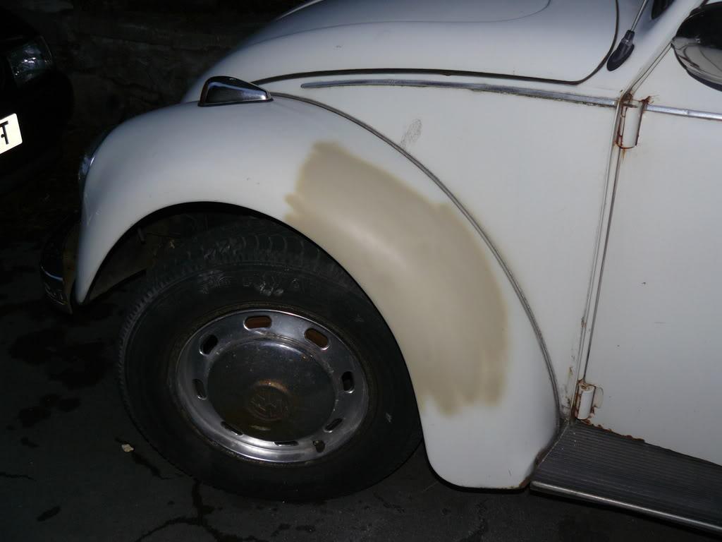 My first beetle Stella... P1020449