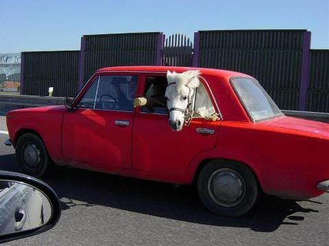 Prancing horse Ferrari2