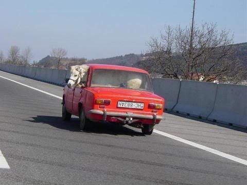 Prancing horse Ferrari3