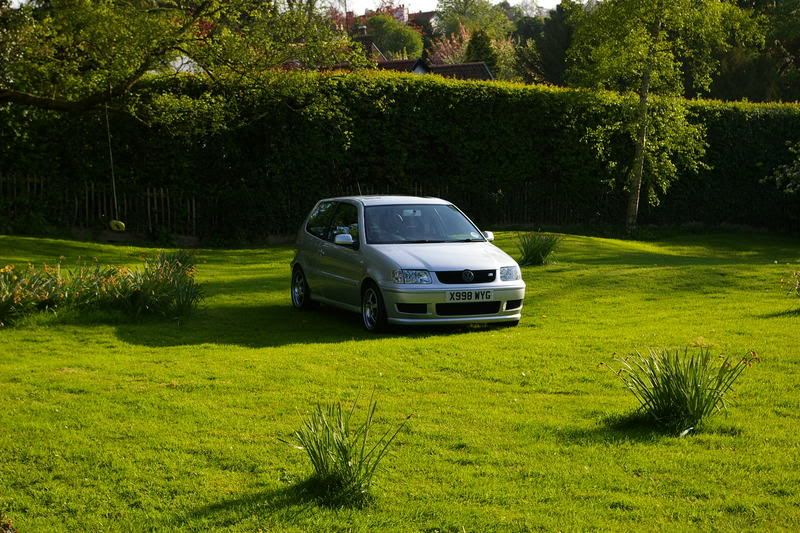 My polo - Update 22nd June SG1L2647