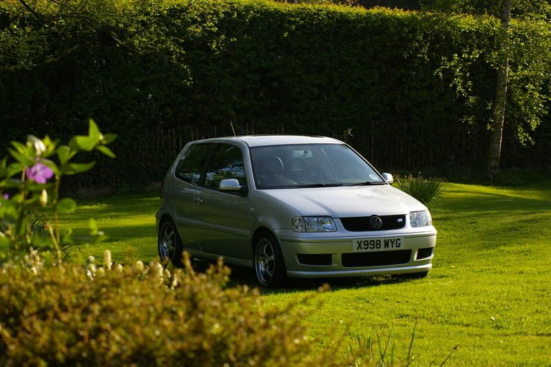 My polo - Update 22nd June SG1L2673