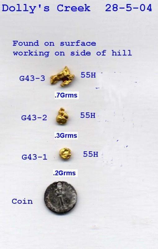 Dollys Creek worth detecting - Page 4 G43-1DollysCreek28-5-04G43-1G43-3_zpsac9b1a18