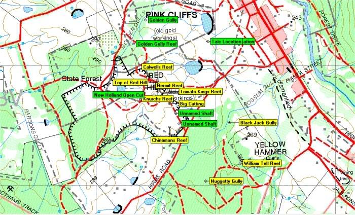 Goldfields of Heathcote Vic. 1