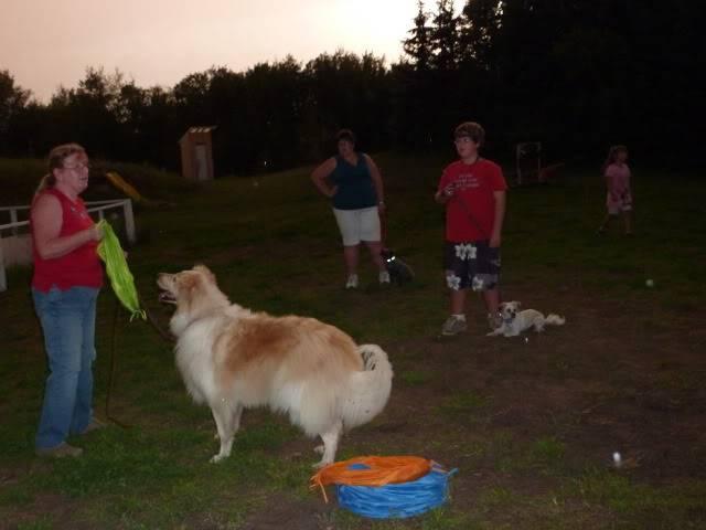 Doggie Fun Club - Last week P1000858