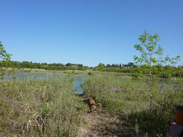 Circle and Attridge - Saskatoon *** Image Heavy *** P1000176