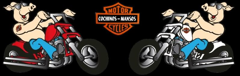 Grupo Motero Los Cochinos Mansos