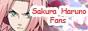 ~// Sakura Haruno fans V.2 //~