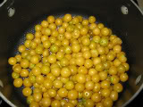 Canning & Preserving 101 - Page 5 Ground-cherries-in-pot
