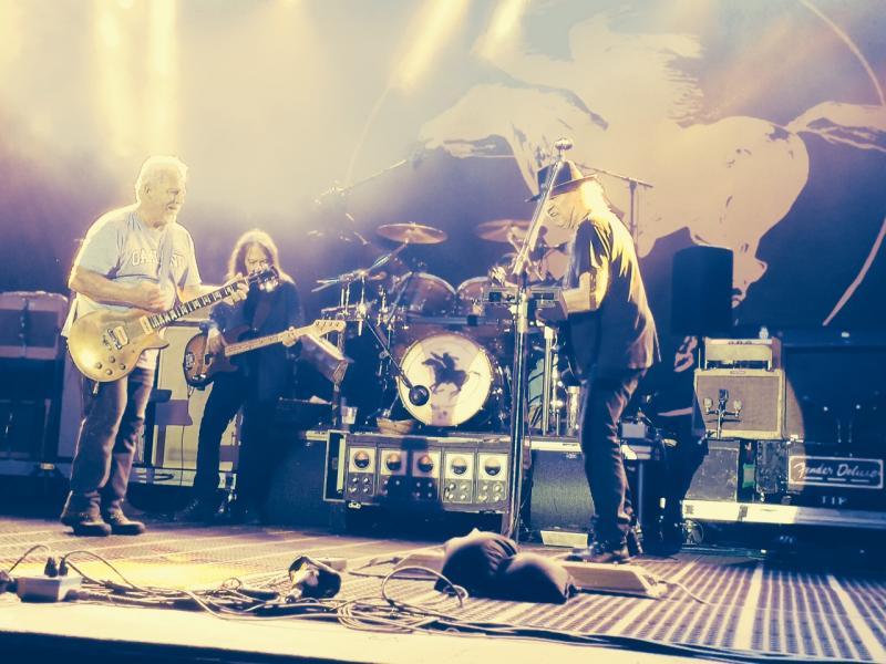 Concert Neil Young & CH à Colmar le 8 août 2014 Colmar30-Copie_zps60b99f50