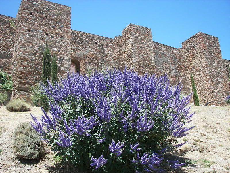 Andaluzia si Tanger cu RyanAir Cetate