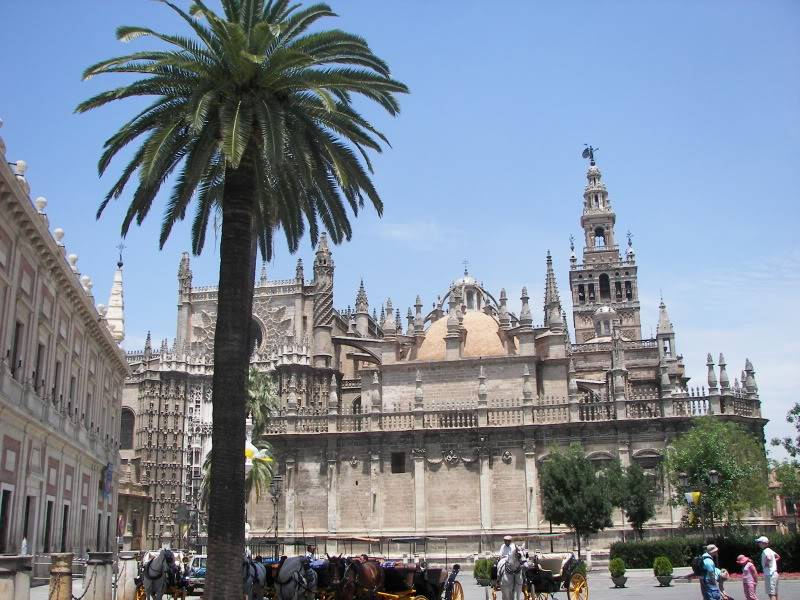 Andaluzia si Tanger cu RyanAir S_catedrpalm