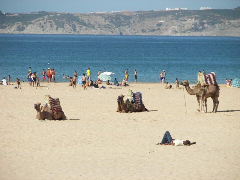 Andaluzia si Tanger cu RyanAir T_camile