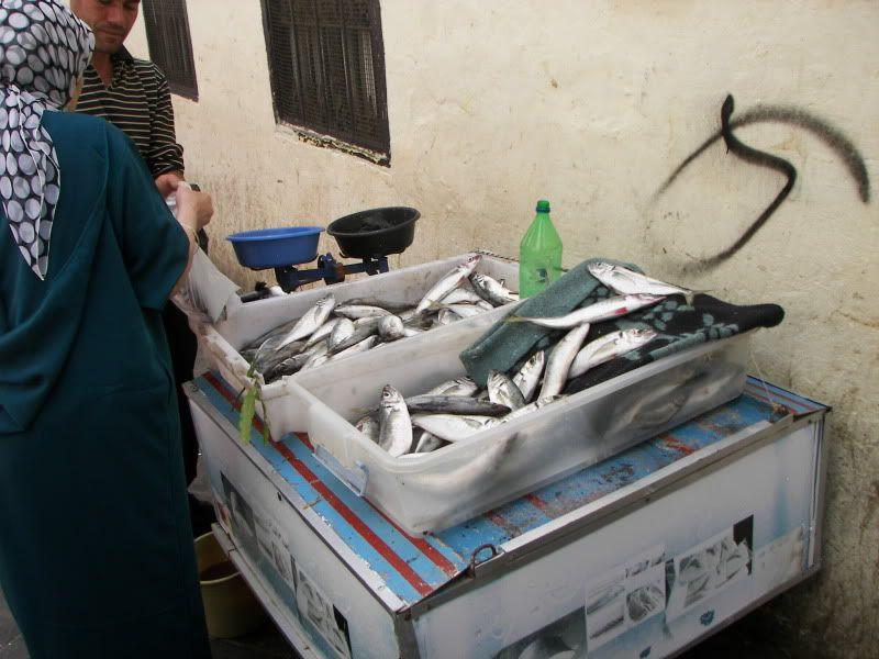 Andaluzia si Tanger cu RyanAir T_fishmarket