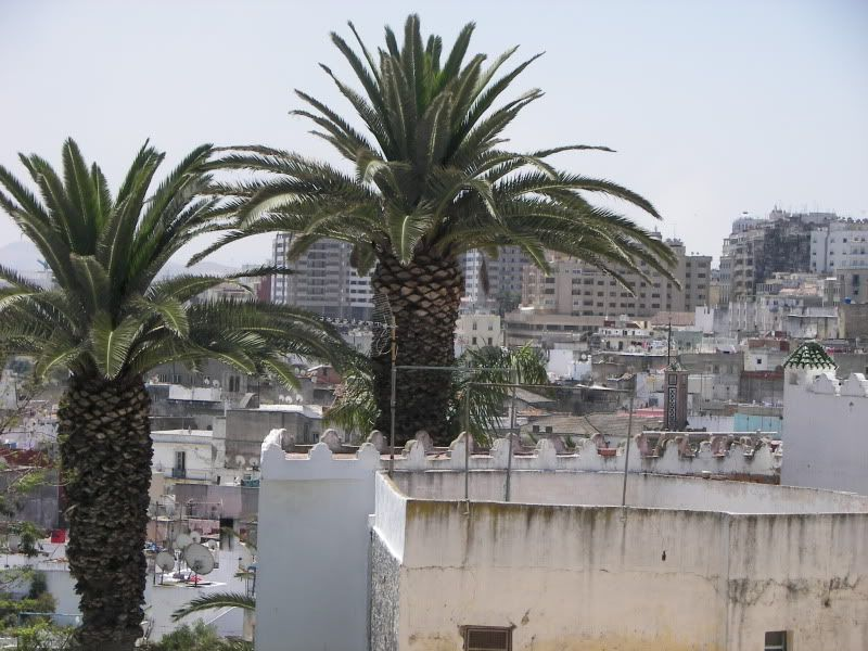 Andaluzia si Tanger cu RyanAir T_rooftops