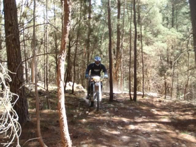 Aussie ride, Orange 2 day adventure PA240006640x480