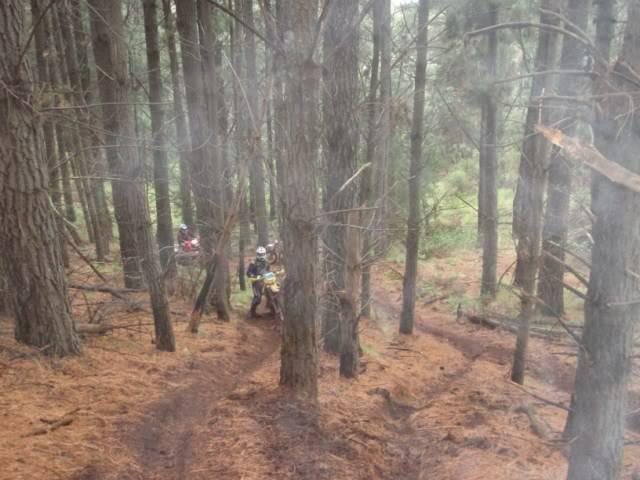 Aussie ride, Orange 2 day adventure PA250053640x480