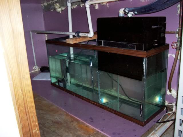 DIY sump Tanks291