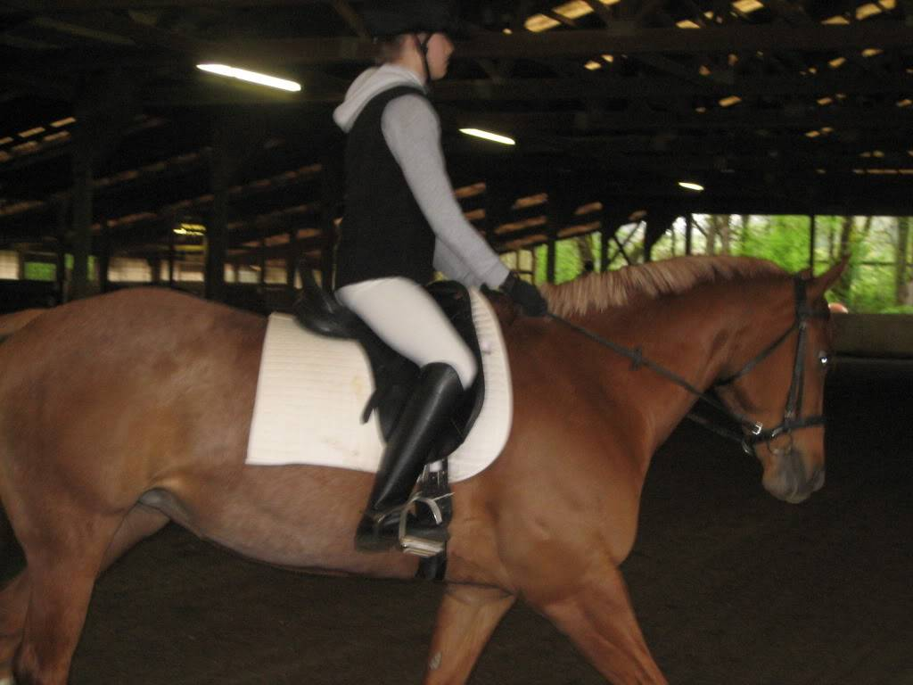 Shally and I at our first Dressage Show! IMG_1861
