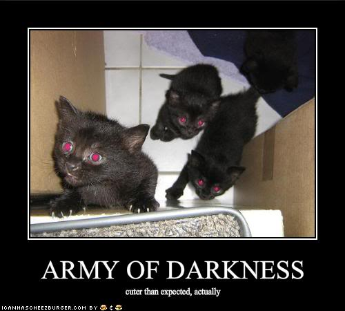 HAHAHA Funny Pic Thread - Page 2 Funny-pictures-the-army-of-darkness