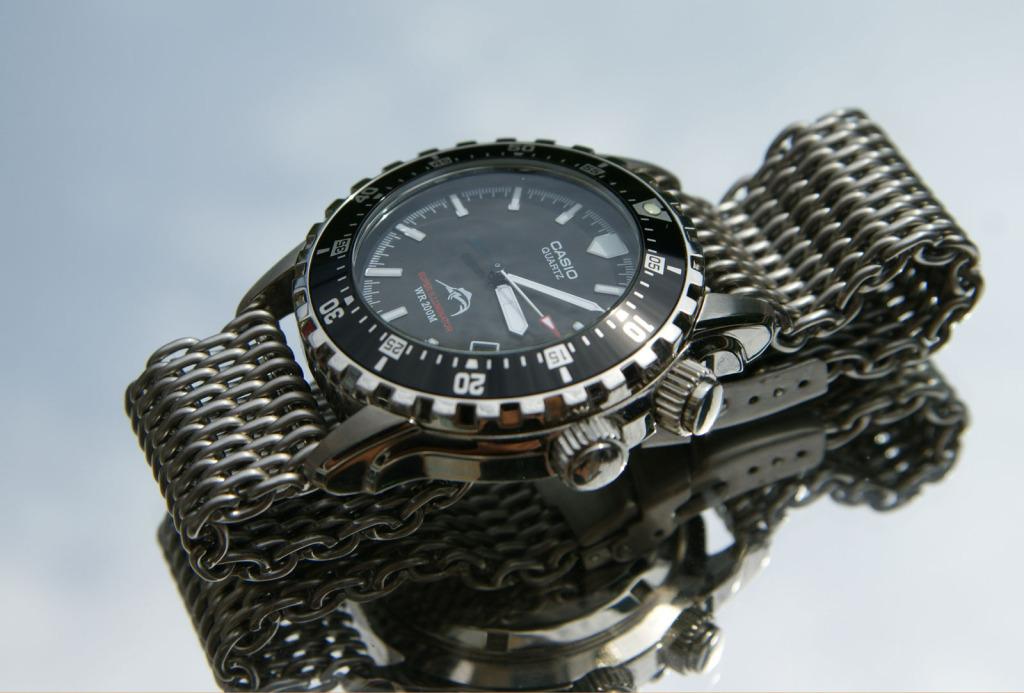 vostok - Votre montre du jour DSC09157