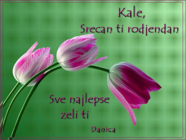 KALE , KALENCE ..... ZaKale