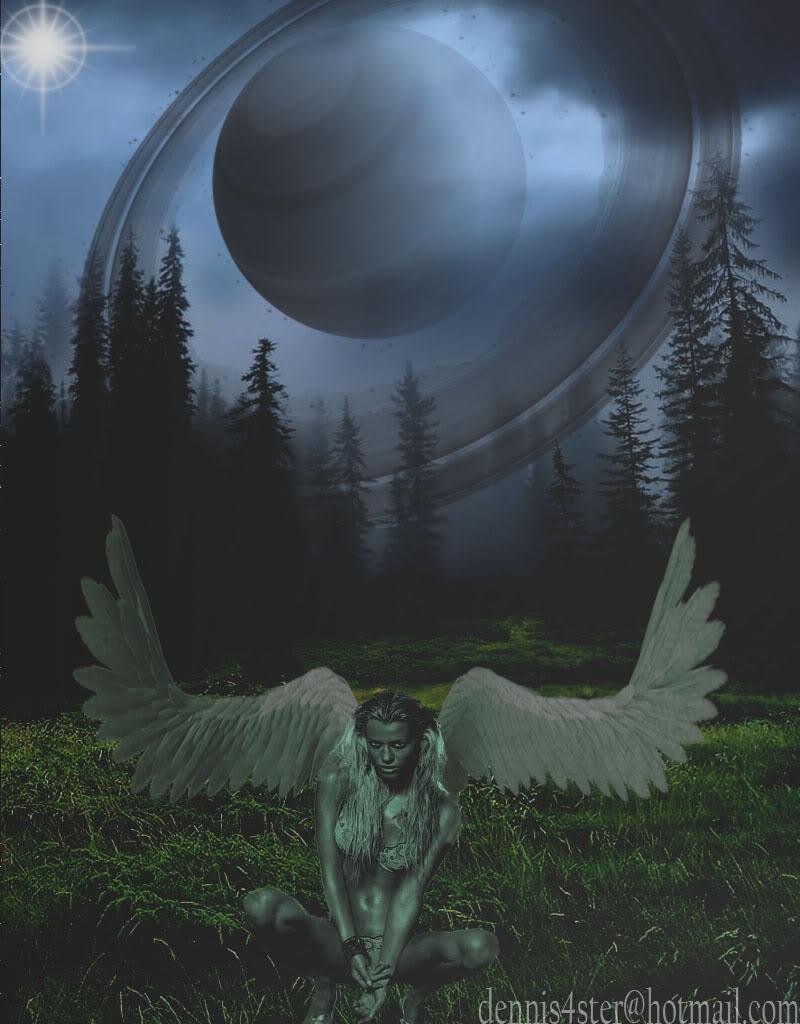 esta es mi galeria Angel