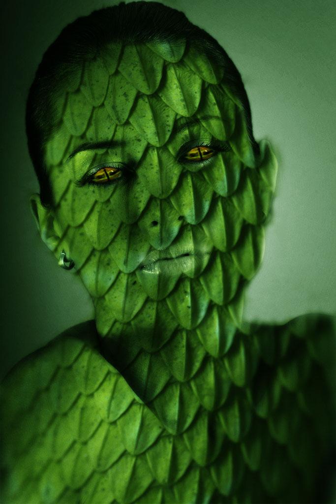 esta es mi galeria Serpiente