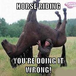 Youtube/funny vids/funny pics page - Page 3 Horse_zpsc44e1181