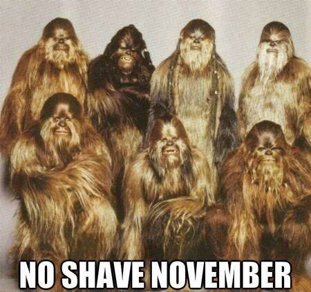 Youtube/funny vids/funny pics page - Page 2 Movember_zps64c98419