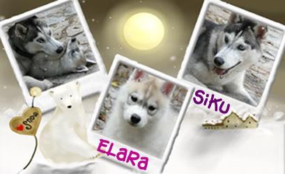 Siku and Elara's Scrapbook - Page 2 SikuElara