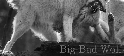 Big Bad Wolf AdBBorder_zpsuj4zo3it