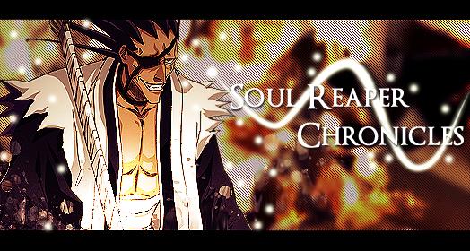 Soul Reaper Chronicles