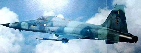 Projek Tentera Udara M29-13F-5E_1