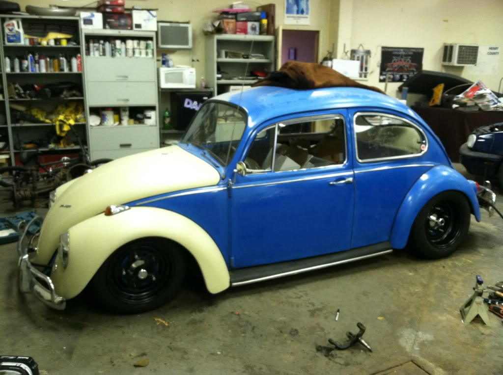 67 beetle ; name unknown Abcb0ab1