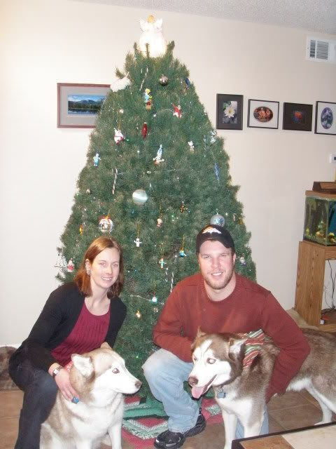 Christmas Tree - Page 2 PC160102