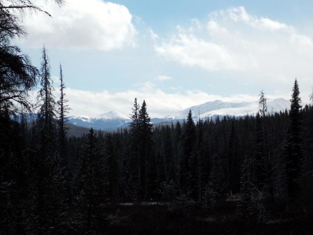 Claudia's husky birthday hike - Salt Lick Trail, Summit County *photo heavy* - Page 2 2012-11-10133518