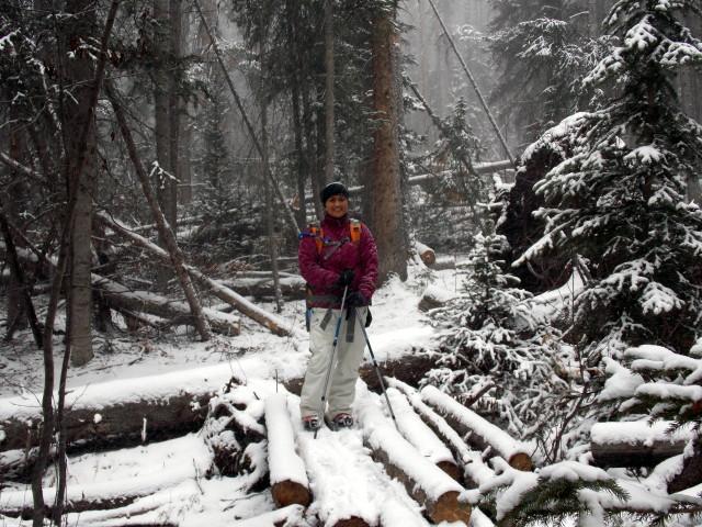 Claudia's husky birthday hike - Salt Lick Trail, Summit County *photo heavy* - Page 2 2012-11-10135933