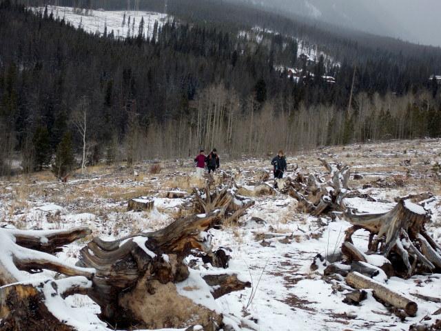 Claudia's husky birthday hike - Salt Lick Trail, Summit County *photo heavy* - Page 2 2012-11-10143617