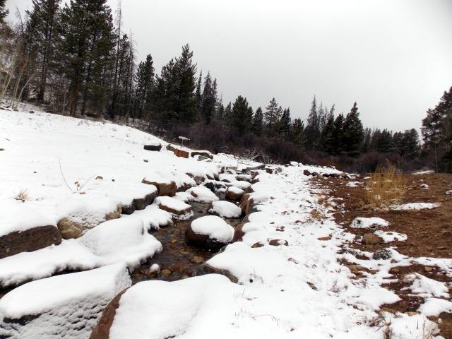 Claudia's husky birthday hike - Salt Lick Trail, Summit County *photo heavy* - Page 2 2012-11-10145851