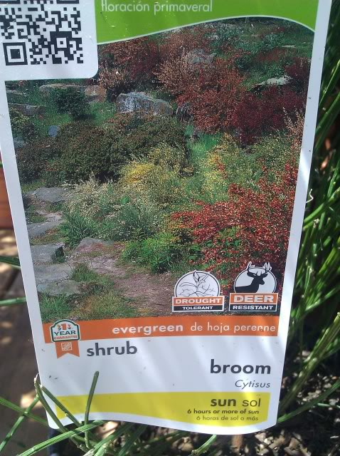 Jenn's Gardening Thread-2012 - Page 2 IMG_20120506_125954