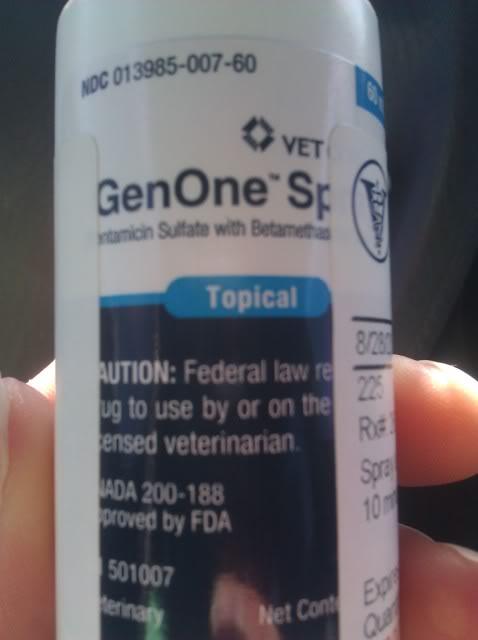 sierra needs to go to the vet IMG_20120828_091531
