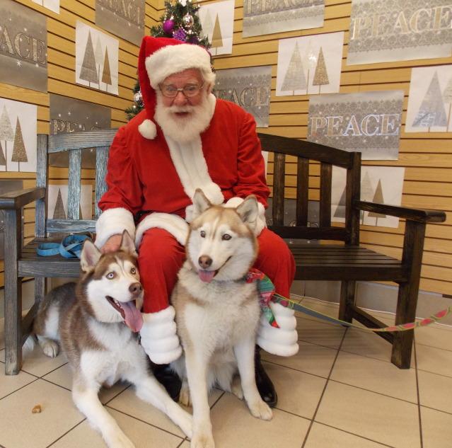 Sierra, Jack & Finn - Page 5 2012-01-01000000-46